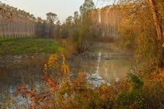 Po άποψη ποταμών μια ημέρα φθινοπώρου Στοκ Εικόνα