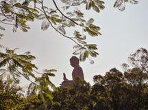 po μοναστηριών lin του Βούδα γιγαντιαίο άγαλμα Στοκ Φωτογραφία