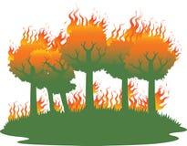 Pożar lasu katastrofa Zdjęcia Stock