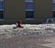 Pożarniczego hydranta śnieg obraz royalty free