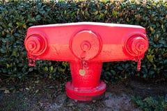 Pożarniczy Hidrant Fotografia Royalty Free