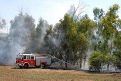 pożarniczy las Fotografia Royalty Free