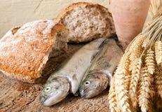 Pão e peixes do vinho Fotografia de Stock