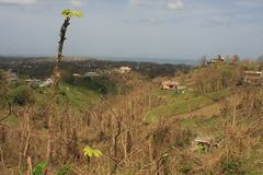 Po Huraganowego Maria Rincon Puerto Rico Wrzesień 2017 fotografia stock