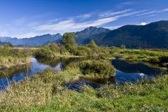 Po'lder de Pitt, lago Pitt, prados de Pitt, BC Imagem de Stock