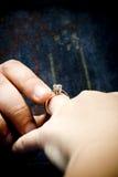 poślubia ja Obraz Stock