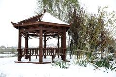 Po śniegu Obrazy Stock