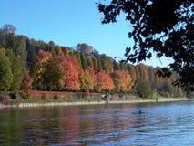 Po River Turin, Italien Arkivbilder