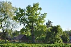 Po środku natury stara wioska Zdjęcie Royalty Free