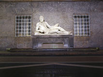 Po Statue, Turin Royalty Free Stock Photography