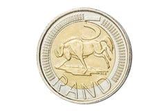 Południe - afrykanin 5 skrajów moneta Zdjęcie Royalty Free