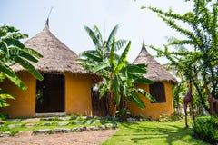 Południe - afrykanina ogródu projekt Zdjęcie Royalty Free