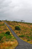 Południowa Afryka, Hluhluwe Imfolozi gry rezerwa, Natal Fotografia Stock