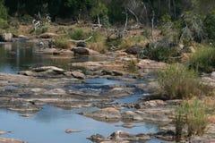 Południowa Afryka krajobraz Obraz Royalty Free