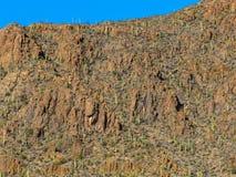 Południowa Arizona pustynia Obraz Royalty Free