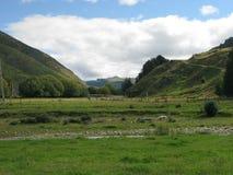 Południowa wyspa Nowa Zelandia Zdjęcie Stock