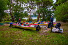POŁUDNIOWA wyspa, NOWY CC$ZEALAND MAY 22, 2017: Niezidentyfikowane kobiety pakuje dla Kayaking w Abel Tasman parku narodowym w No Fotografia Stock