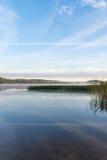 Południowi Finland jeziora Lata wczesny niedziela rano Fotografia Royalty Free