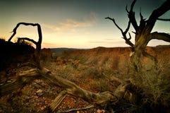 Południowy Australia Zdjęcia Stock