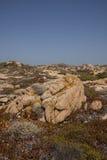 Południowy Corsica krajobraz Obraz Royalty Free