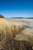 Południowy Finlandia, wczesna wiosna Zdjęcie Royalty Free