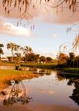 Po wschodu słońca w Floryda Zdjęcie Stock