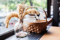 Poaceae και ένα καλάθι του καρυκεύματος Στοκ Φωτογραφίες