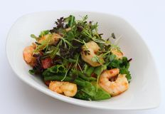 Poach prawns and green leaves salad royalty free stock images