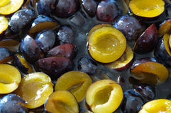 Poached cutted plums in sugar syrup. Poached cutted dark and yellow plums in sugar syrup Royalty Free Stock Photo