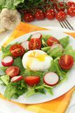 Poached egg. Colorful mixed salad with poached egg Royalty Free Stock Image