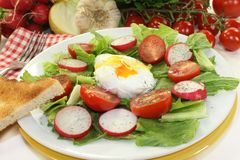 Poached egg. Colorful mixed salad with poached egg Stock Photography