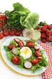 Poached egg Royalty Free Stock Images