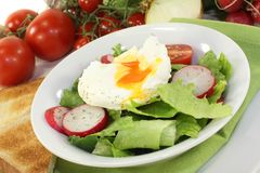 Poached egg Royalty Free Stock Photo