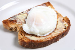 Poached Egg. Closeup of poached egg on buttered wholemeal toast Royalty Free Stock Photo