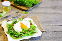 Poached egg, frisée lettuce leaves with pomegranate seeds and olive oil. Healthy salad on a plate, fork, knife Royalty Free Stock Images