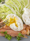 Poached egg with green salad, salmon and onion Stock Images