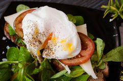 The poached egg with greens Royalty Free Stock Images