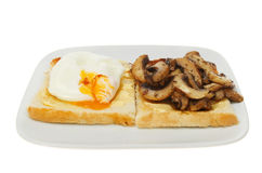 Poached egg and mushrooms Stock Image