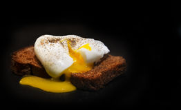Poached egg on a slice of wholemeal bread. Royalty Free Stock Photography
