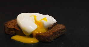 Poached egg on a slice of wholemeal bread Stock Image