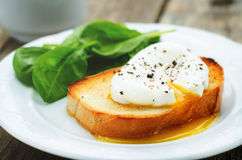Poached egg with spinach Stock Photography