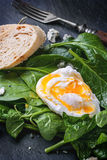 Poached egg on spinach. Poached egg served with vintage fork on fresh spinach leaves Royalty Free Stock Image