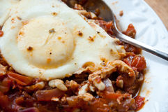 Poached egg with stewed tomatoes Stock Images