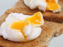 Poached Egg on Toast. Poached eggs on buttered wholemeal toast Royalty Free Stock Images