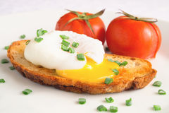 Poached egg, toast, and baked tomatoes sprinkled with green onion Stock Image