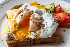 Poached Egg on Toast Bread with Cheddar Cheese, Balsamic Vinegar, Salad and Black Sesame or Cumin Seeds. Organic Food royalty free stock photography
