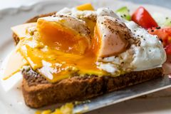 Poached Egg on Toast Bread with Cheddar Cheese, Balsamic Vinegar, Salad and Black Sesame or Cumin Seeds. Organic Food stock photo