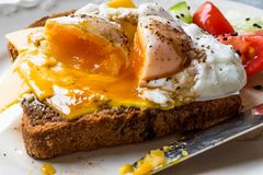 Poached Egg on Toast Bread with Cheddar Cheese, Balsamic Vinegar, Salad and Black Sesame or Cumin Seeds. Organic Food stock images