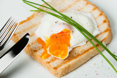 Poached Egg On Toast With Chives And Spices. White Plate Royalty Free Stock Image