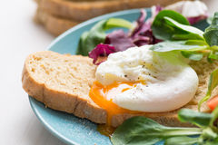 Poached egg toast Royalty Free Stock Image